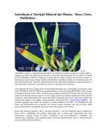 Introdução à Nutrição Mineral das Plantas.doc