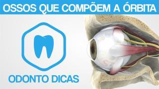 ROTEIRO OSSOS DA ORBITA.pdf