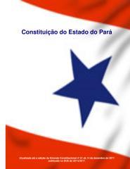 Constituicao do Para.pdf