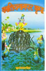 kaliya nag par kripa by hanuman prasadji poddar.pdf