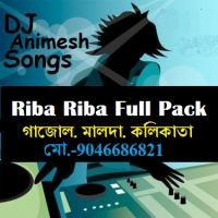 Riba Riba 8th Version (Mashup Mix) DJ Manish f.t DJ Animesh.mp3