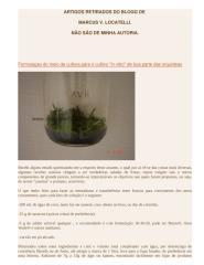 artigos diversos orquideas.doc